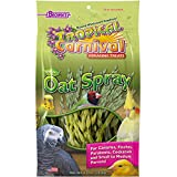 F.M.Brown's Tropical Carnival Natural Oat Spray For Pet Birds, 2.5 oz
