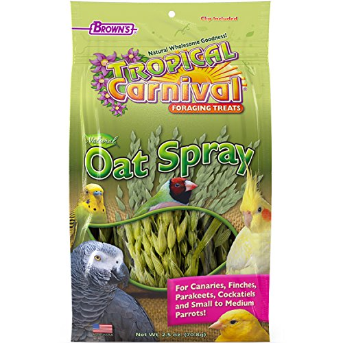 F.M. Brown'S Tropical Carnival Natural Oat Spray Foraging Treat For Canaries, Finches, Parakeets, Cockatiels, And Small To Medium Parrots, 2.5-Oz Bag - Usa Grown And Harvested