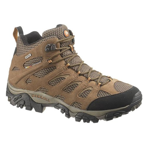Merrell Men's Moab Mid Waterproof Hiking Boot,Earth,10.5 M US