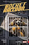 Rocket Raccoon: Grounded