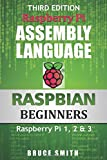 Raspberry Pi Assembly Language RASPBIAN Beginners: Hands On Guide