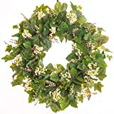 Darby Creek Trading Everyday Greenery Magnolia & English Ivy Berry Wreath
