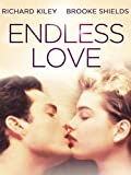 DVD : Endless Love