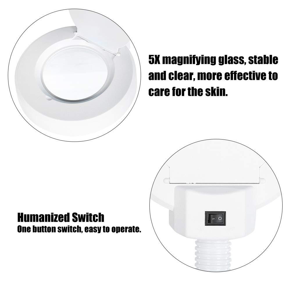 EU L/ámpara de Pie LED con 5 X Lupa y 30 Pcs LED para Inspecci/ón de la Piel y Dental y Belleza y Tatuaje Luz de Lupa con Soporte Movable Rotaci/ón 360