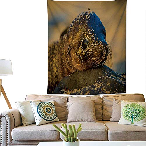 ve tapestrybaby sea Lion at Sunset in Galapagos Islands 51W x 60L INCH ()