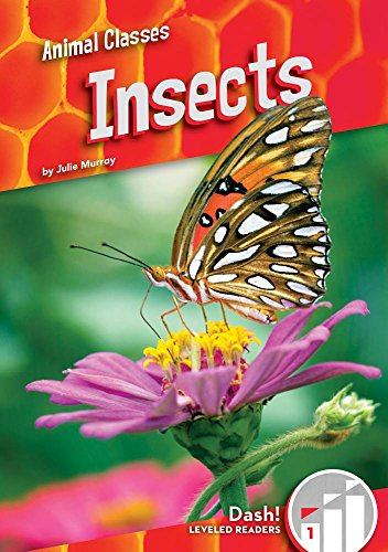 Insects (Animal Classes: Dash! Leveled Readers, Level 1)