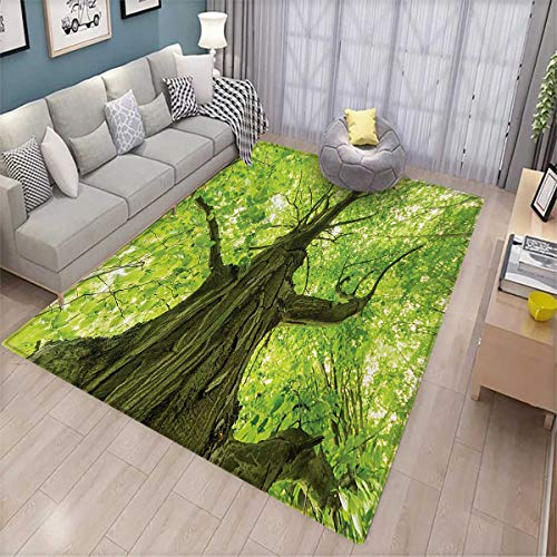 Forest Bath Mat 3D Digital Printing Mat Old Big Majestic Tree Environment Countryside Eco Solidarity National Park Scenery Door Mat Increase 6'x7' Green Brown ()