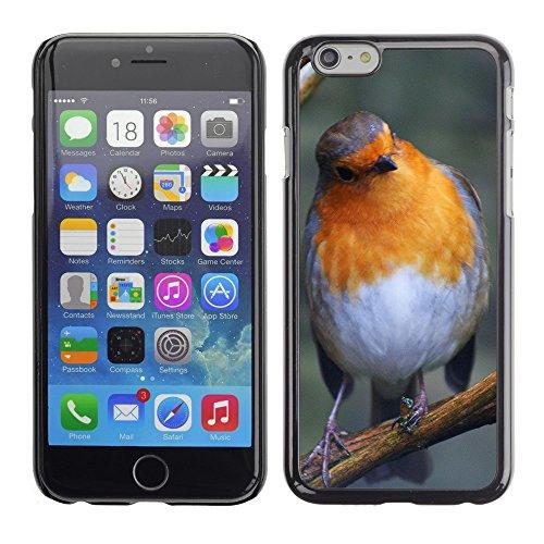 "Premio Sottile Slim Cassa Custodia Case Cover Shell // F00017636 Curieux oiseau // Apple iPhone 6 6S 6G 4.7"""