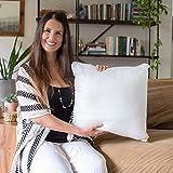 Foamily Throw Pillows Insert Set of 4-18 x 18