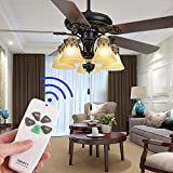 Eogifee Universal Ceiling Fan Remote Control and