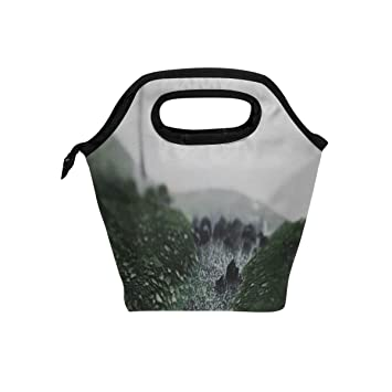 1f1a8a6ae1ea Amazon.com: Your Home Moss Surface Fog Lights Lunch Tote Bag ...