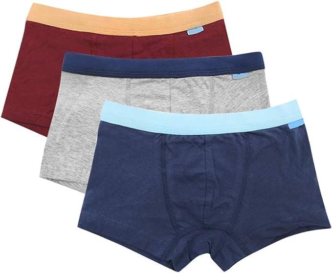 Daytwork Calzoncillos Algodón Ropa Interior - Niños Boxer Calzoncillos de Algodón Pantalones Cortos Braguitas 3 Piezas: Amazon.es: Ropa y accesorios