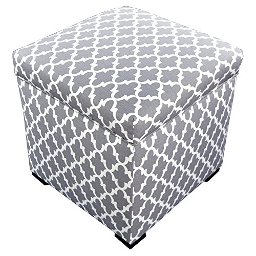 The Sole Secret Mini Shoe Storage Ottoman, 18.5 x 19 x 19 inches, Fulton Series in Storm Silver