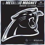 "Carolina Panthers 6"" MAGNET Silver Metallic Style Vinyl Auto Home Football"
