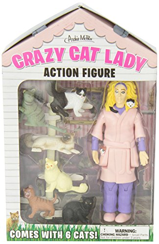 Crazy Cat Lady Internet Dating Video Games