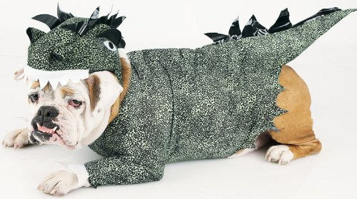 Dinosaur Dog Costume & Amazon.com: Dinosaur Dog Costume: Clothing