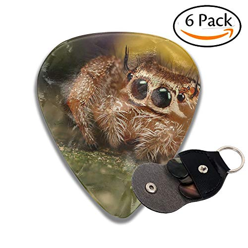 Colby Keats Guitar Picks Plectrums Cute Jumping Spider Classic Electric Celluloid Acoustic For Bass Mandolin Ukulele 6 Pack 3 Sizes .96mm