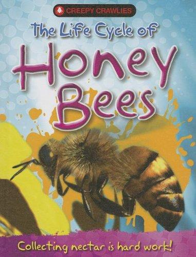 Download The Life Cycle of Honey Bees (Creepy Crawlies) pdf epub