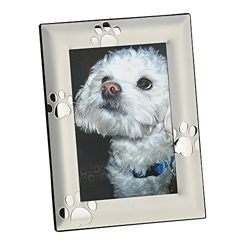 Puppy Paw Print 4x6 Frame -