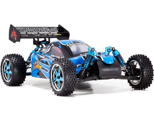 Redcat Racing Tornado EPX PRO Brushless Electric Buggy, Blue/Flame, 1/10 Scale