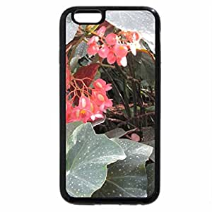 iPhone 6S Plus Case, iPhone 6 Plus Case, Photography day with my flowers 07