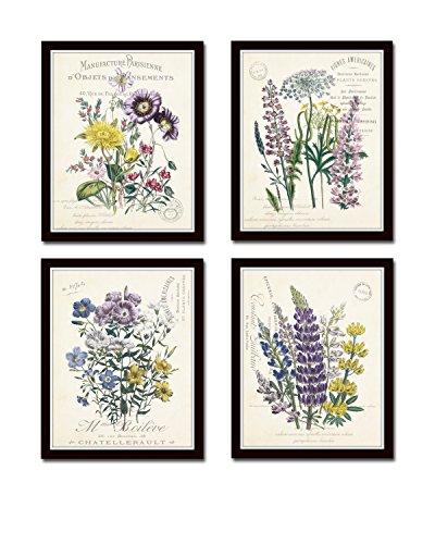 French Botanical Collage Art Giclee product image
