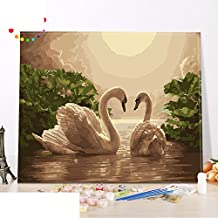 Diy oil painting/living room,bedroom,scenery,animal swan hand-painted handmade digital decoration painting new love-A 60x75cm(24x30inch)