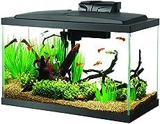7 aquascaping styles for aquariums the aquarium guide