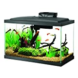 Aqueon Fish Aquarium Starter Kit LED, 10 gallon