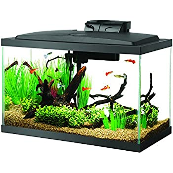 Perfecto kit aquar led biowheel 10g for 10 gallon fish tank dimensions