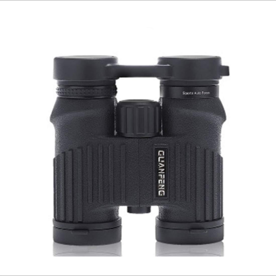 JPAKIOS 屋外用双眼鏡ストレート高精細低照度ナイトビジョン屋外望遠鏡 (Color : ブラック)  ブラック B07PLQKTJM