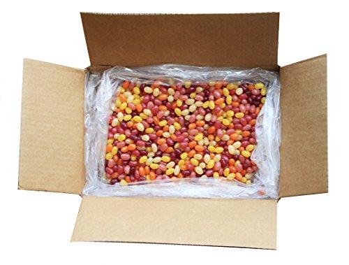Surf Sweets Organic Jelly Beans, 10 Pound Bulk