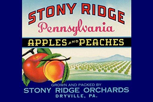 - ArtParisienne Stony Ridge Pennsylvania Apples and Peaches 12x18 Poster Semi-Gloss Heavy Stock Paper Print