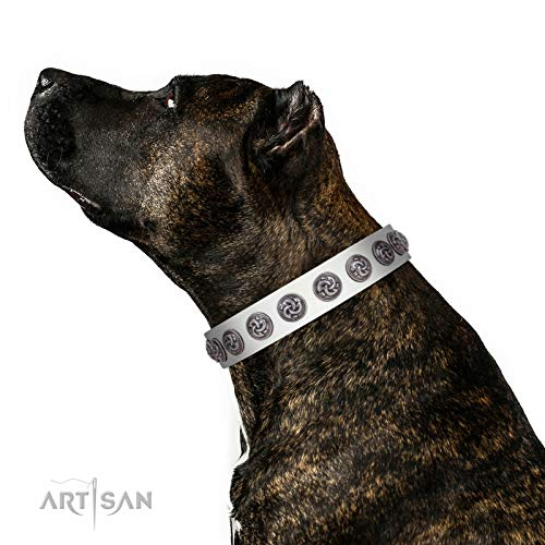 FDT Artisan 30 inch Bohemian Spirit White Leather Dog Collar with Silvery Brooches - Exclusive Handcrafted Item - 1 1/2 inch (40 cm) Wide - Gift Box Included ()