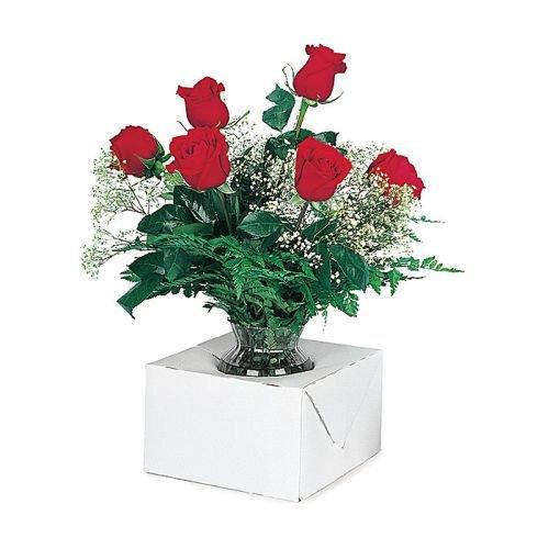 Burton & Burton Holder-White Auto Vase Holder 100 Ct