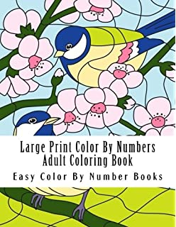 Simple Large Print Magic Garden Color By Number Adult Coloring
