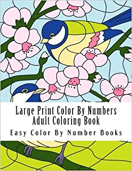 Large Print Color By Numbers Adult Coloring Book Flowers