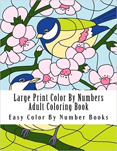 Amazon Com Large Print Color By Numbers Adult Coloring Book