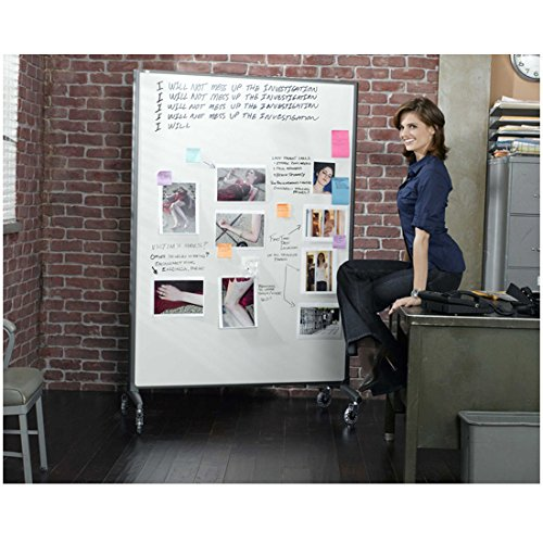 castle-tv-series-2009-8-inch-x-10-inch-photograph-stana-katic-seated-on-desk-next-to-white-board-kn