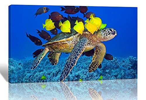Purple Verbena Art 1pcs Stretched and Framed Sea Turtle with Fishes Pictures Photo Prints on Canvas Wall Paintings, 12''x16'' High Giclee Walls Artwork for Home Room Decor Decorations, Ready to Hang
