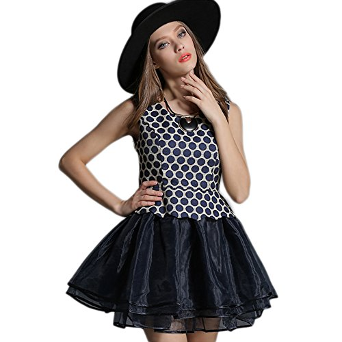 dd33f0288 WintCO Women Dresses Polka Dot Patchwork Organza Black and Blue Ctue Dress