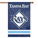 Tampa Bay Rays MLB Applique Banner Flag (44x28)