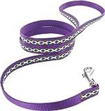 Kakadu Pet Cheyenne Dog Nylon Lead, 1/2″ x 48″, Purple, My Pet Supplies
