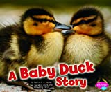 A Baby Duck Story, Martha E. H. Rustad, 1429670916