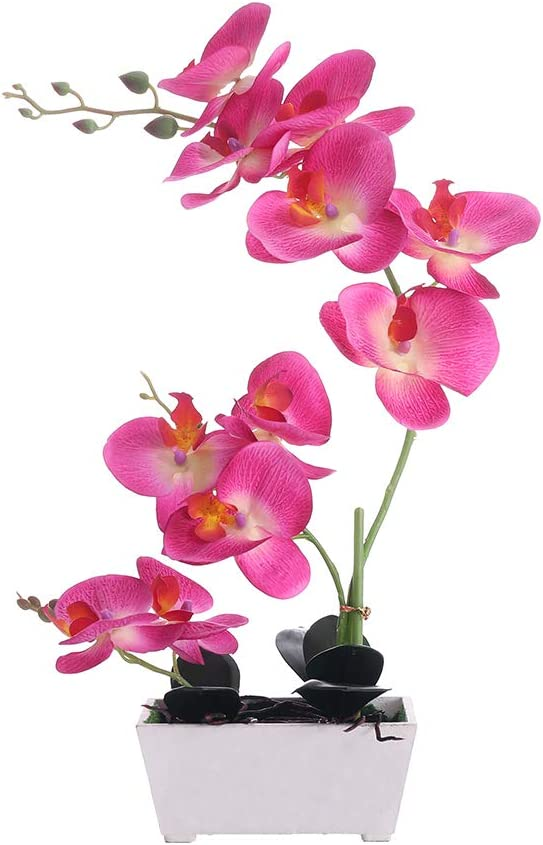 Orchid Plant for Artificial Flowers,Orchids Artificial,Orchid Arrangement ,Purple Orchid Plant Perfect Packaging 11 Heads 4 Color with Solid Plastic Vase for Environmental Protection(Purple)