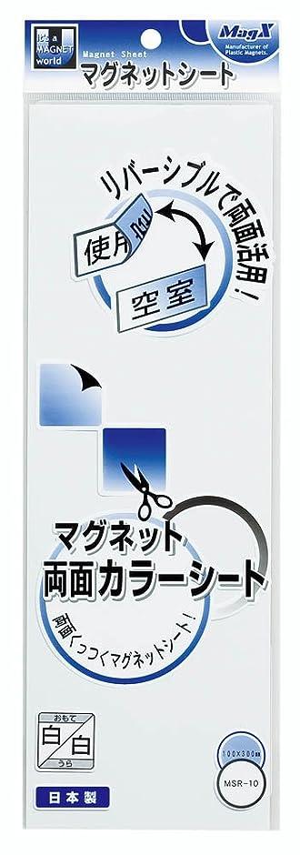 Mag Magnet X-Duplex-Farbblatt W100 x H300 x T0.8mm wei_ / wei_ MSR ...