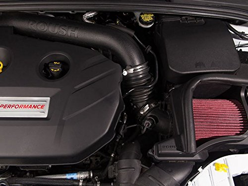 Amazon.com: ROUSH 422065 2013-2018 Focus ST and RS 2.0 Liter Cold Air Intake System: Automotive