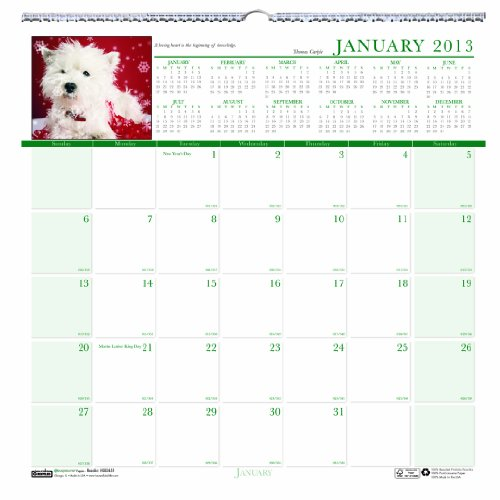 Earthscapes Puppies Wall Calendar (House of Doolittle Earthscapes Puppy Wall Calendar 12 Months January 2013 to December 2013 12 x 12 Inches Photo Recycled, Full Color (HOD3651))