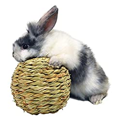 Natural Woven Grass Play Ball for Small Animals
