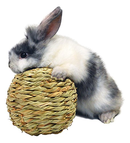 Medium Grass Ball - Peter's Woven Grass Play Ball for Rabbits